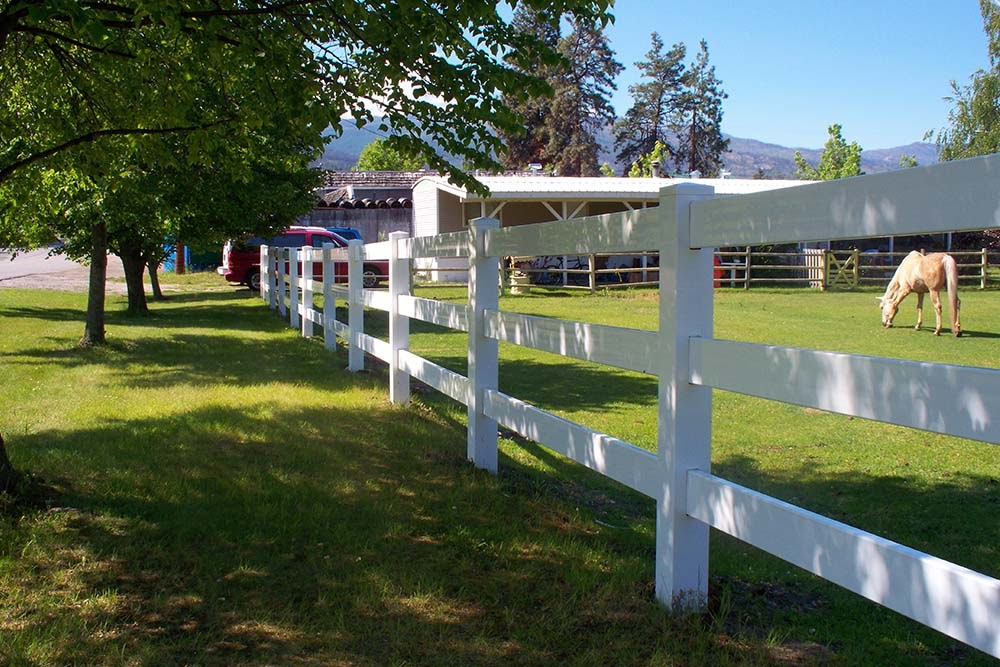 OK Vinyl Ranch Rail fence with a horse on one side and trees on the other.